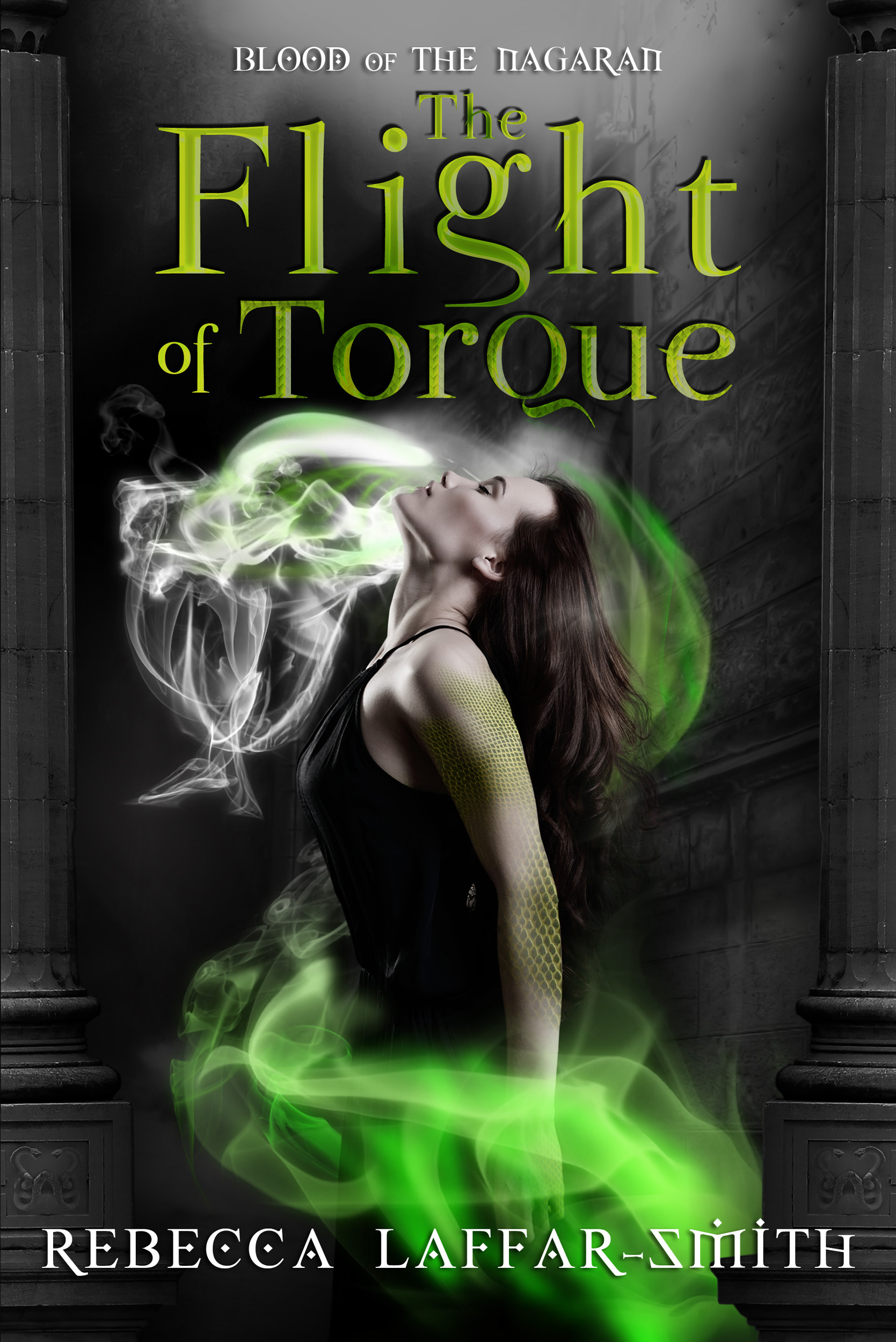The Flight of Torque by Rebecca Laffar-Smith
